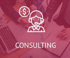 Consultinbg